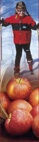 skiing and apples